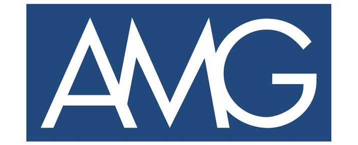 Analyse du cours de l'action AMG