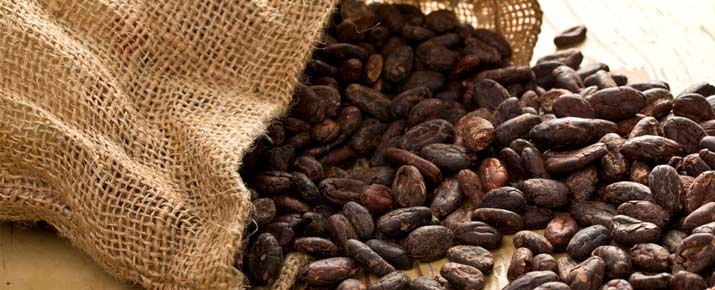 Analyse du cours du cacao