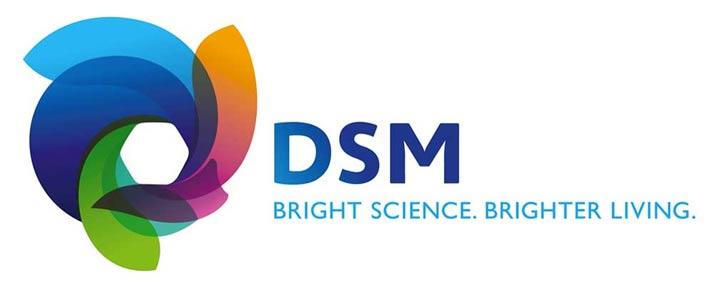 Analyse du cours de l'action DSM