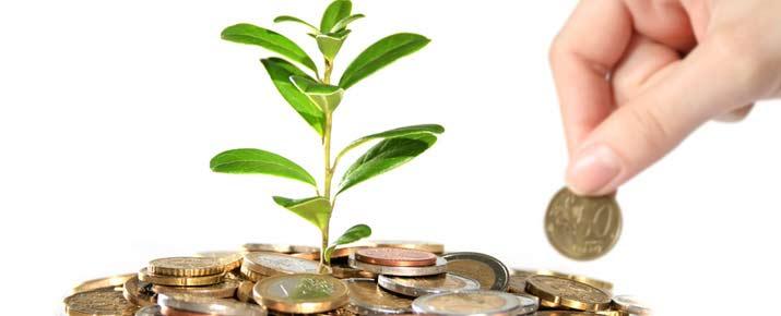 Palmarès des entreprises au plus fort dividende