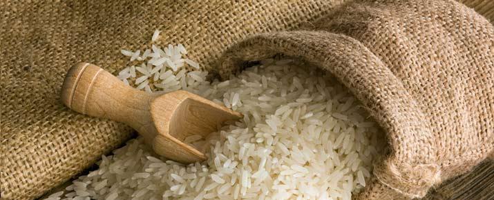 Trading du riz en ligne